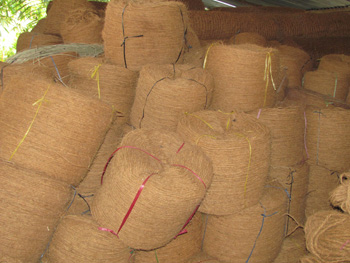 Processing of coconut fiber into rope will not harm the environment