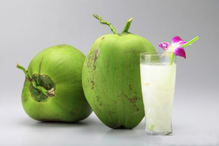 Fresh Canned Coconut Water Coconut Vietnam